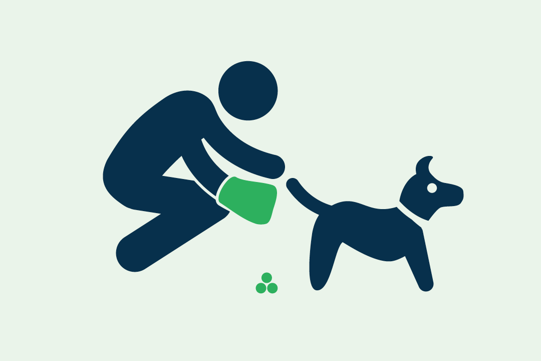 Pick up Dog Poop graphic